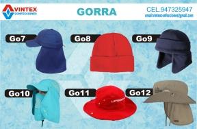 GORRO2